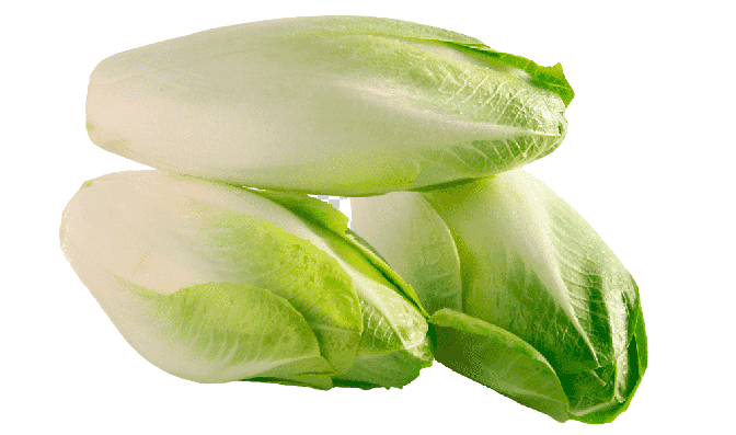 Endive Health Benefits, Nutritional Value and Uses