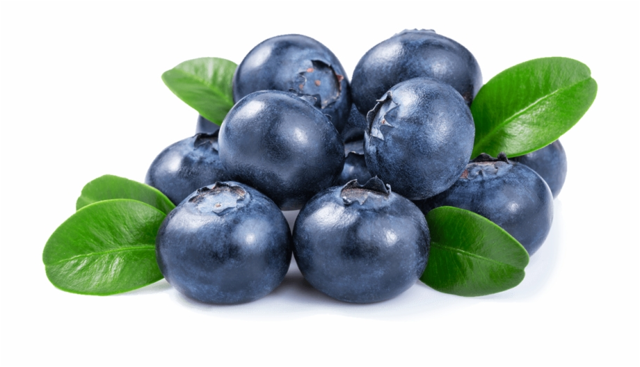 Blueberry Health Benefits, Nutritional Value and Uses