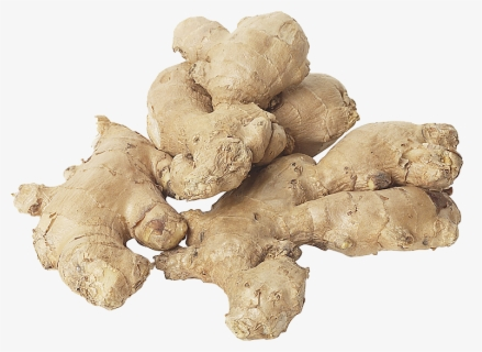 Ginger Health Benefits, Nutritional Value and Uses